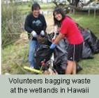 Volunteers Bagging Waste Final